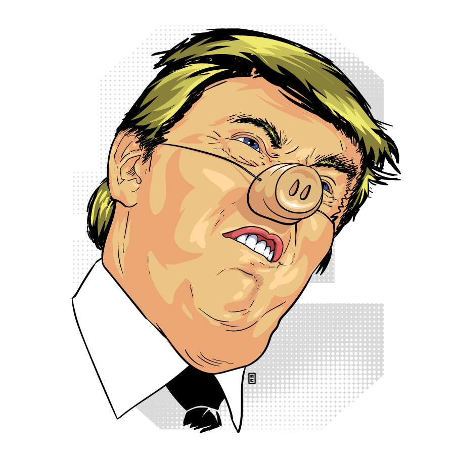 Donald Trumpig by zor